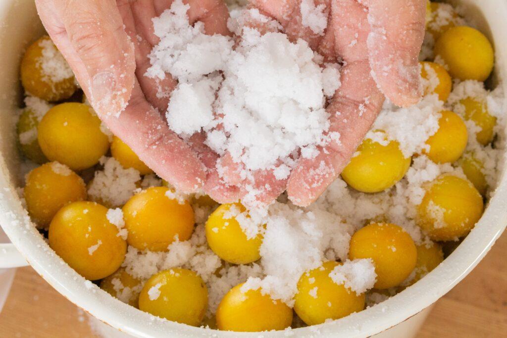 梅干しの塩